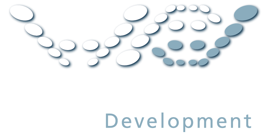 High Performance Development